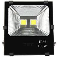 tanie Naświetlacze-3000/6000 lm Reflektory LED 2 Koraliki LED LED wysokiej mocy Wodoodporne / Dekoracyjna Ciepła biel / Zimna biel