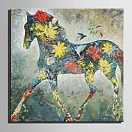 billiga Oljemålningar-Hang målad oljemålning HANDMÅLAD - Djur Europeisk Stil Moderna Duk