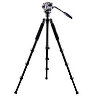 billiga Mobil cases & Skärmskydd-Aluminium 620mm 4.0 Sektioner Digital Kamera Trefot