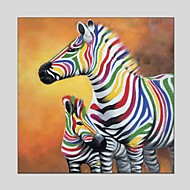 cheap Oil Paintings-Hand-Painted Animals Square, Classic Modern Canvas Oil Painting Home Decoration One Panel