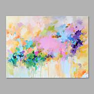 halpa -Maalattu Kukkakuvio/Kasvitiede Horizontal,Taiteellinen 1 paneeli Kanvas Hang-Painted öljymaalaus For Kodinsisustus