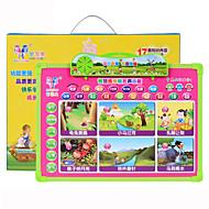Lernkarten Lesespielzeug 3-6 Jahre alt