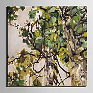 billiga Oljemålningar-Hang målad oljemålning HANDMÅLAD - Blommig / Botanisk Retro Duk