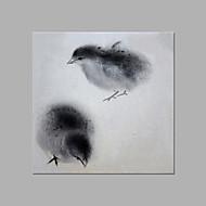 Kézzel festett Állat Művészi Egy elem Vászon Hang festett olajfestmény For lakberendezési