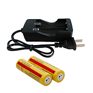 Chargers LED 2000 lm Mode - with Batteries and Charger Rechargeable Camping/Hiking/Caving Everyday Use Cycling/Bike Hunting