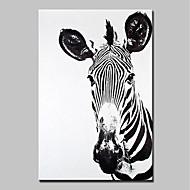 Ručno oslikana Životinja Vertikalno,Sažetak Moderna 1pc Platno Hang oslikana uljanim bojama For Početna Dekoracija
