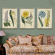 Virágos / Botanikus Régies (Vintage) Illusztráció Wall Art,PVC Anyag a Frame For lakberendezési frame Art Nappali szoba Konyha Étkező