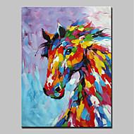 お買い得  -ハング塗装油絵 手描きの - 動物 動物 近代の キャンバス