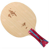 tanie Tenis stołowy-DHS® Hurricane B2-FL Ping Pang/Rakiety tenis stołowy Zdatny do noszenia Trwały Drewniany Włókno węglowe 1