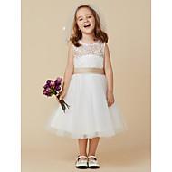 Χαμηλού Κόστους -Πριγκίπισσα Μέχρι το γόνατο Φόρεμα για Κοριτσάκι Λουλουδιών - Δαντέλα Τούλι Αμάνικο Scoop Neck με Φιόγκος(οι) Ζώνη / Κορδέλα με LAN TING