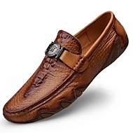 Męskie Skórzane buty Skóra nappa Wiosna i jesień Casual / W stylu brytyjskim Mokasyny i buty wsuwane Masaż Czarny / Kawowy / Brązowy