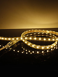 Waterproof 10W / M 5050 SMD Warm White Light LED-Streifen-Lampe (220V, Länge wählbar)