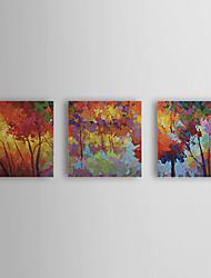 povoljno -Ručno oslikana Cvjetni / Botanički Platno Hang oslikana uljanim bojama Početna Dekoracija Tri plohe