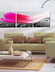 cheap -Stretched Canvas Print Canvas Set Landscape Three Panels Horizontal Print Wall Decor Home Decoration