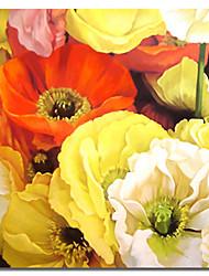 abordables -Reproduction transférée sur toile Art Floral Popies colorés