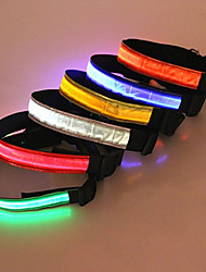cheap -Dog Collar LED Lights / Safety Plastic / Nylon Red / Blue / Pink