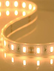 cheap -5M LED 5730 SMD Casing Waterproof Strip (60LED/M)