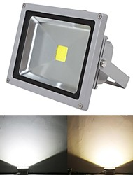 LED Floodlight 1 leds High Power LED 5000lm Warm White Cold White 2800-7000 AC 85-265