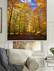 cheap -Roller Shade 100% Polyester Eco-friendly Mount Inside Painting