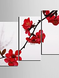 cheap -Botanical Three Panels Vertical Print Wall Decor Home Decoration