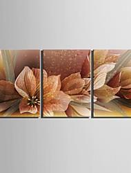 e-Home® allungato su tela decorazione floreale pittura set di 3
