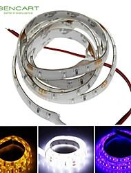 cheap -Strip Light 100cm 3014Smd 60Led Cool White/Blue/Yellow 3.5W 7500-9000K 350LM  IP68 Waterproof Strip Light DC12V
