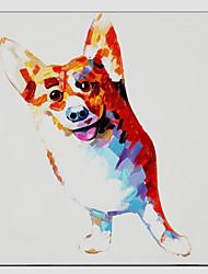 baratos -pintura a óleo estilo cão fresco, material de lona, com quadro esticado pronto para pendurar tamanho: 60 * 90 centímetros.