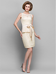 Tubinho Curto / Mini Renda Vestido Para Mãe dos Noivos - Renda de LAN TING BRIDE®