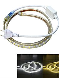 Недорогие -Источники питания 60 светодиоды Тёплый белый Белый Водонепроницаемый Подсветка для авто 220.0