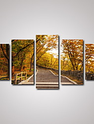 5 Panels Autumn Forest and the Stone Staircase Landscape Picture Print Wall Art on Canvas Unframed