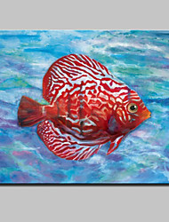 cheap -Lager Handmade Modern Glofish Oil Painting On Canvas For Living Room Home Decor Wall Paintings Whit Frame Ready To Hang