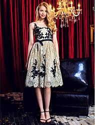 abordables -Robe de bal robe de bal à encolure en col et longueur de genou avec appliques par ts couture®