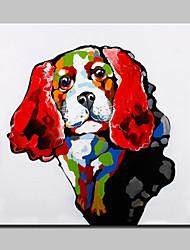 Недорогие -Hang-роспись маслом Ручная роспись - Животные Modern С рамой