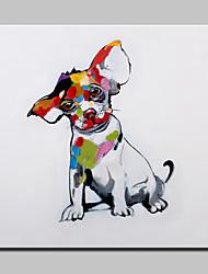 baratos -Pintura a Óleo Pintados à mão - Animais Modern Com Moldura