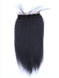 Недорогие -SloveHair Прямой Естественные прямые 100% ручная работа Швейцарское кружево Натуральные волосы Бесплатный Часть Средняя часть 3 Часть