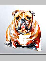 billige -pilsner håndmalet dyrevenner hund oliemaleri på lærred væg kunst billede home decor pinsemandag ramme
