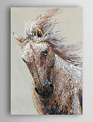 Hand Painted Oil Painting Animal Running Horse with Stretched Frame 7 Wall Arts®