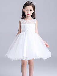 cheap -Ball Gown Knee Length Flower Girl Dress - Lace Sleeveless Jewel Neck by YDN