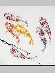 Недорогие -ручной росписью рыбы масляной живописи на холсте современного абстрактного искусства стены картины с растянутой кадр готов повесить