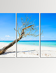 cheap -VISUAL STAR®3 Panel Seascape Photos Print on Canvas Wall Decoration Ocean Canvas Artwork Ready to Hang