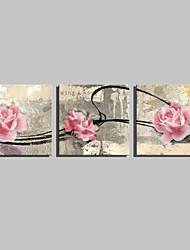 Недорогие -ботанический Холст для печати 3 панели Готовы повесить , Квадратный