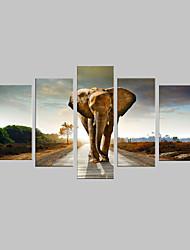 e-Home® allungata tela camminare sulla strada dell'elefante set pittura decorativa di 5