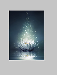 cheap -E-HOME® Stretched LED Canvas Print Art White Lotus on The Water LED Flashing Optical Fiber Print One Pcs