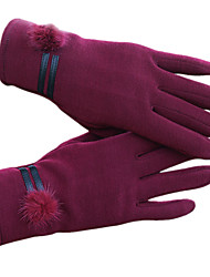 Women'S Touch-Screen Gloves (Purple)