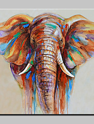 100% Hand-Painted Elephant Animal Oil Painting On Canvas Modern Abstract Wall Art Pictures For Home Decoration With Stretched Frame Ready To Hang