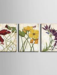 trasferimenti su tela arte floreale danza fiore set di 3