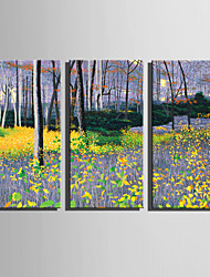 cheap -E-HOME Stretched Canvas Art Purple Woods Decoration Painting Set Of 3
