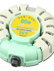 Aquarium Chauffages D'air 65W220V