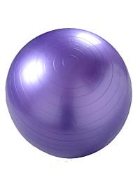 65cm Fitness Ball/Yoga Ball Yoga Gym PVC