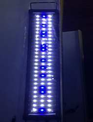 Aquarium LED Lighting Blue Energy Saving LED Lamp 220V